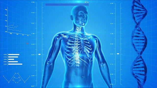 Le mystère de l'ostéopathie enfin révélé